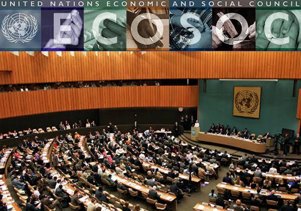 Otorga Naciones Unidas estatus consultivo especial a IDHEAS
