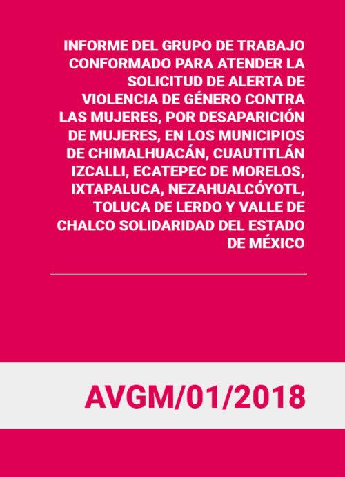 INFORME DEL GRUPO DE TRABAJO CONFORMADO PARA ATENDER LA SOLICITUD DE ALERTA DE VIOLENCIA DE GÉNERO CONTRA LAS MUJERES