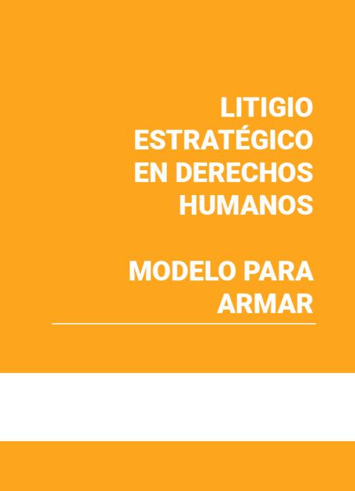Litigio estratégico en Derechos Humanos. Modelo para armar