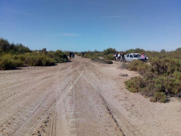 Fiscalía de Sinaloa desacata sentencia que obliga a observar y cumplir las acciones urgentes emitidas por el Comité Contra las Desapariciones Forzadas de la ONU