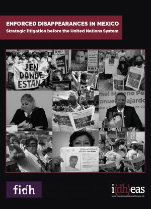 Strategic litigation before the United Nations System